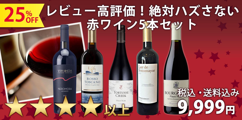 レビュー高評価!4.0点以上を集めた絶対ハズさない赤ワイン5本セット