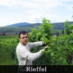 ワイン職人に聞く、10の質問【第6回】リーフェル(フランス・アルザス地方)