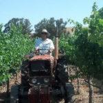 ワイン職人に聞く、10の質問【第54回】テート・ドッグ・ワインズ(USAカリフォルニア州リヴァモア・ヴァレー)
