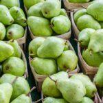ワインボキャブラ天国【第74回】「洋梨」 英:pear 仏:poire