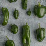 ワインボキャブラ天国【第76回】「ピーマン」 英:bell pepper 仏:poivron