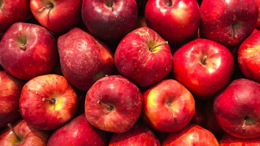 ワインボキャブラ天国【第77回】「りんご」 英:apple 仏:pomme