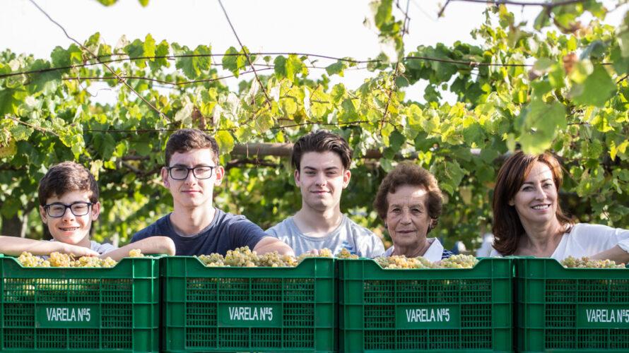 ワイン職人に聞く、10の質問【第83回】ジャスト・ビー・ワインズ(スペイン リアス・バイシャス地方)