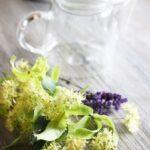ワインボキャブラ天国【第87回】「菩提樹の花」 英:linden blossom 仏:fleur de tilleul