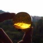 ワインボキャブラ天国【第96回】「琥珀色の」英:amber 仏:ambre