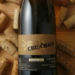 クオリティーワイン生産者バイオグラフィー 【イタリア】Nec-Otium & Cru: Chale クリスチャン・パタ