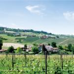 世界有数のシャンパン消費国としてのイタリア (営業 西崎 隆太)