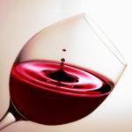 フィラディス実験シリーズ第13弾『万能なワイングラスを探せ!』(営業 笹井 涼乃)